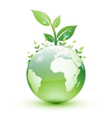 services-environment-main